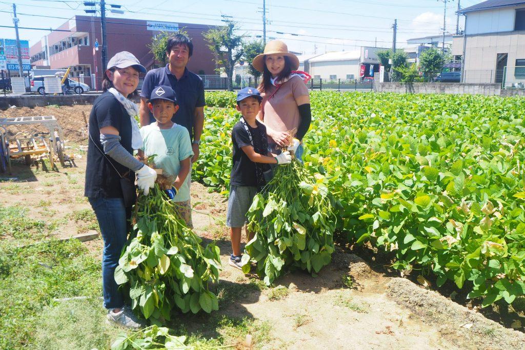 大阪の枝豆の旬は「8月末まで」です!