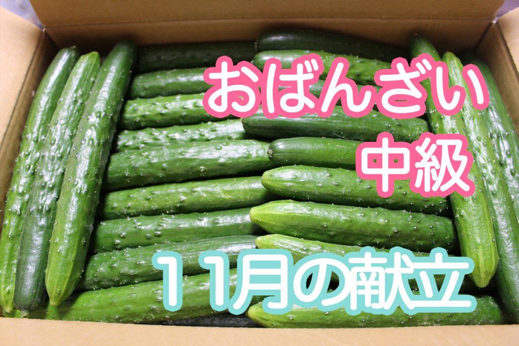 【中級】11月レッスン「大阪キュウリ」